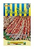 Les Graines Bocquet - Graines De Haricot Nain À Écosser Big Borlotto - 150G - Graines Potagères À Semer - Sachet De 150Grammes