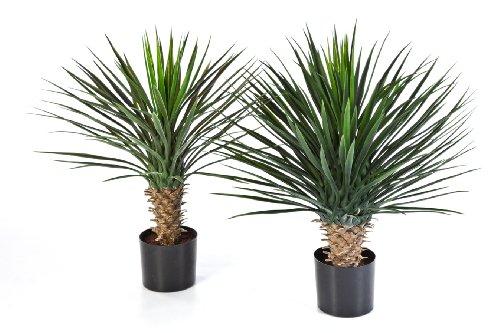 artplants – Künstliche Yucca Rostrata Penelope mit 90 Blättern, Deluxe, 80 cm – Deko Palmlilien Baum/Kunststoff Palme