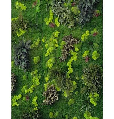 Mur végétal intérieur stabilisé