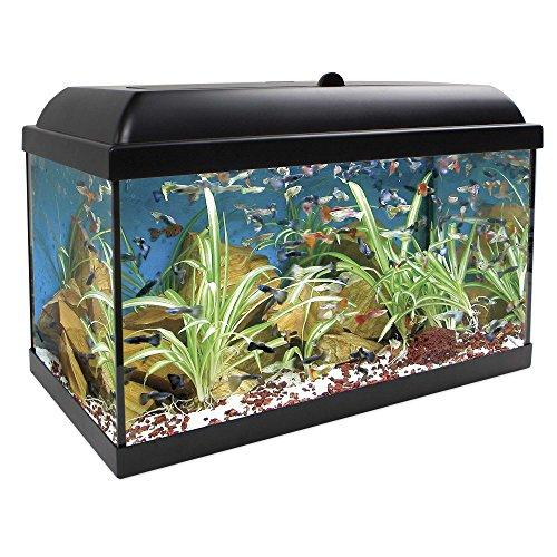 ICA KDI45 Kit Aqua-Led Pro 45 con Filtro Interior
