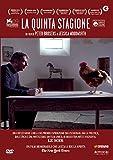 La Quinta Stagione (DVD)