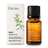 Basil & (Indien), ätherisches Öl–100% rein, Bio, therapeutische Qualität für die Aromatherapie-Diffusor für Haut und relaxtion–10ml–gya Labs