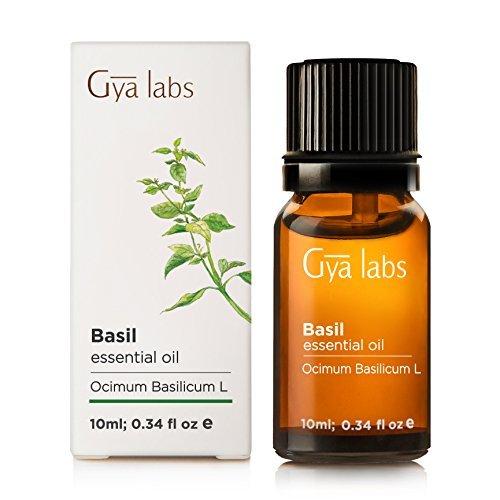 Gya Labs Olio essenziale di basilico, 10ml, puro al 100%, non diluito, naturale e terapeutico per aromaterapia, pelle e relax