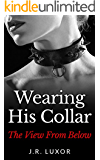 Wearing His Collar the View from Below (BDSM Romance Book 2)