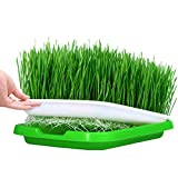 Huntfgold Seed Sprouter Tray Keimschale Sprossen Sämlinge Weizen Grassierer Pflanzer Hydroponics Dauerhaft Samen Keimung Tablett für Garden Home Office
