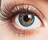 Farbige Kontaktlinsen Blau Ohne Stärke Blaue Jahreslinsen Weiche Motiv-Linsen Farbig Halloween Karneval Fasching Cosplay Kostüm Blue Gelb Hurricane Wirbel