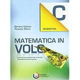 Matematica in volo. Geometria C. Con espansione online. Per la Scuola media