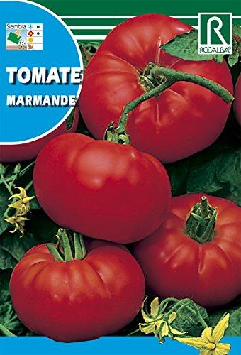 ROCALBA Samen Tomate Marmande 10UD