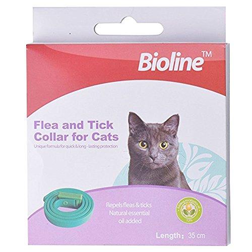 Collier anti-parasite pour chat - Anti-puce et...