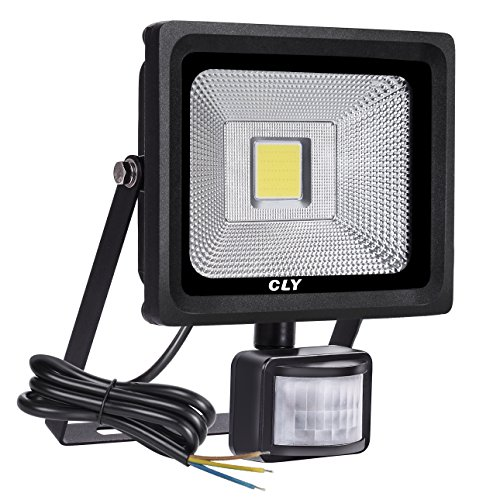 CLY 20W Outdoor Securitys Light With Motion Sensor Led