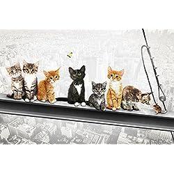 empireposter 740069Gatos sobre soporte de acero de New York Kittens–Diversión Ciudades Impresión Póster, papel, multicolor, 91,5x 61x 0,14cm