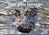 See you later ... Florida Wildlife (Wandkalender 2020 DIN A4 quer): Alligatoren und andere Spezies aus der Fauna Florida's (Monatskalender, 14 Seiten ) (CALVENDO Natur) -