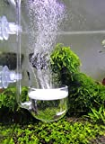 Musik Glas CO2 Diffusor für Aquarium Pflanze (Φ50mm)