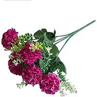 Einheitsgr/ö/ße DAEDALUS 5/x Kinder Kleiderb/ügel Baby Hosen-Fell Bar Trocknen Rack Kleiderb/ügel aus Kunststoff Polypropylen Rose