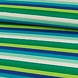 Stoffe Werning Baumwolljersey Streifen bunt royalblau