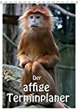 Der affige Terminplaner (Tischkalender 2019 DIN A5 hoch): Der Terminplaner nicht nur für Affenfans (Planer, 14 Seiten) (CALVENDO Tiere)