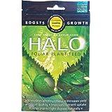 Estimulador de Crecimiento Harpin Hydrogarden Halo Booster (5x2,5g)
