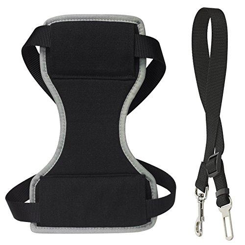 CHAPUIS SELLERIE SLA592 Auto-Sicherheits-Geschirr + -Leine für Hunde - Nylongurt schwarz - Breite 20 mm - Maße 50-70 cm - Größe L