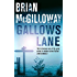 Gallows Lane (Inspector Devlin Mystery Series Book 2)