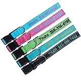 TaiHong Personalisierte Reflektierende Langlebig Hundehalsband anpassen, mit Namen, Namen Bestickt Telefonnummer Pet Halsband, Persönlichen ID Halsband für Hunde
