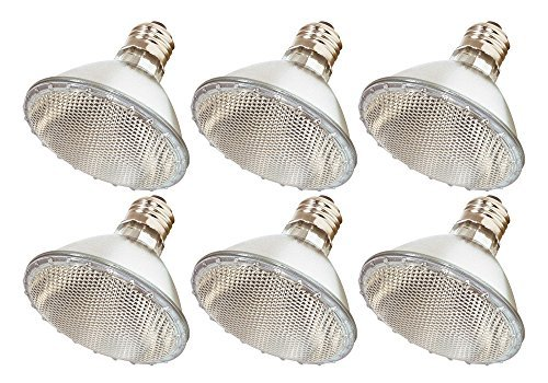(6Stück) 60PAR30/FL 120V-60Watt hohe Ausgangsleistung (Äquivalent Ersatz) PAR30Flood Short Neck-120Volt Halogen Leuchtmittel -