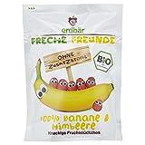 Erdbär Bio Fruchtchips Banane und Himbeere, 16 g