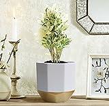 La Jolíe Muse Blumentöpfe Übertöpfe Keramik 2er Set, Klassisches Design Weiß & Gold, Rund & Achteckig Ø16.5 x H15 cm für Innen - 3