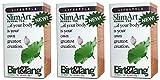 (3 PACK) - Birt & Tang - SlimArt Tea | 50 Bag | 3 PACK BUNDLE
