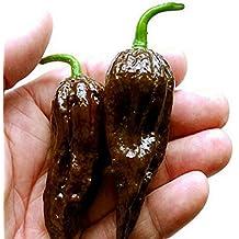 200 semillas / paquete, chocolate Naga Jolokia chile semillas, pimienta fantasma - Naga Jolokia # M386 4 órdenes