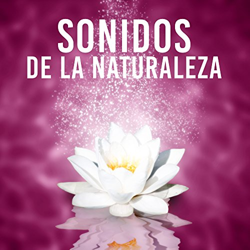 Sonidos de La Naturaleza – Armonía, Goodness, Kindness, Honesty, Asiático, Japonés, Feng Shui, Equilibrio