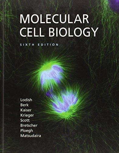 Molecular Cell Biology (Lodish, Molecular Cell Biology) 6th edition by Lodish, Harvey, Berk, Arnold, Kaiser, Chris A., Krieger, Mon (2007) Hardcover