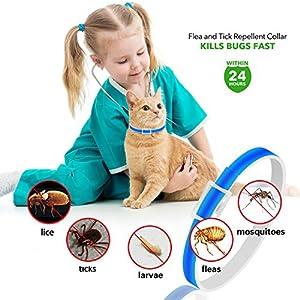 U-picks-Dog-Flea-Collar6-Months-Flea-and-Tick-Control-Protection-for-Dogs-CatsAdjustable-SizeWaterproofStop-Pest-BitesItchingBlue 51lEfMqm32L