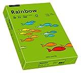 Papyrus 88042676 Druckerpapier Rainbow 80 g/m², A3 500 Blatt intensivgrün