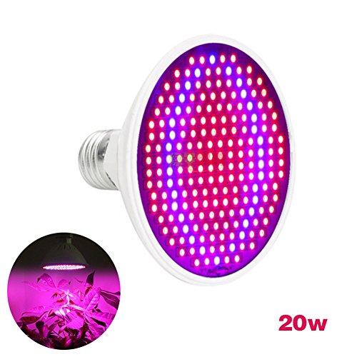 Luz de la planta - Dxlta LED Planta crece bombillas...