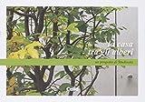 La casa tra gli alberi: un progetto di Studioata. Ediz. italiana e inglese