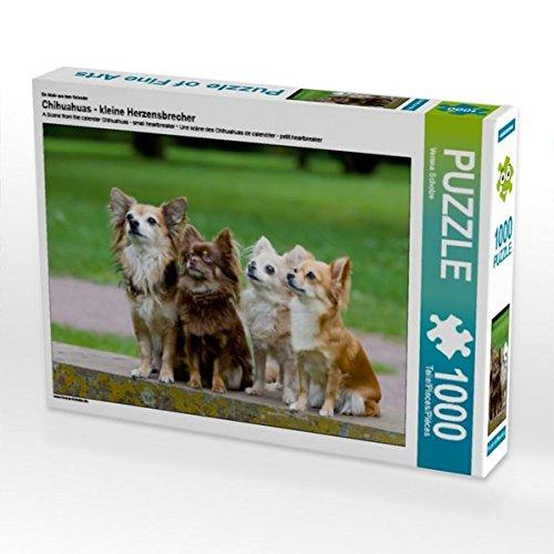Ein Motiv aus dem Kalender Chihuahuas - kleine Herzensbrecher 1000 Teile Puzzle quer -