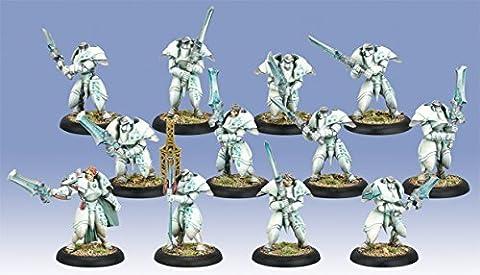 Warmachine Retribution of Scyrah plastic Dawnguard Sentinels with Unit Attachment by Privateer Press