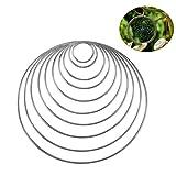 10 Pezzi Acchiappasogni Anelli Di Metallo Cerchio Per Dream Catcher In 10 Diverse Dimensioni (Argento)