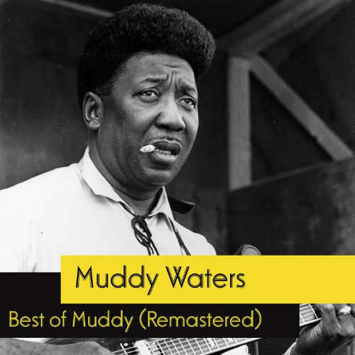 Best Of Muddy Waters (Remastered)