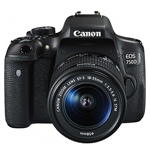 Galleria fotografica Canon EOS 750D + 18-55mm IS STM + JOBY STRAP SLR Camera Kit 24.2MP CMOS 6000 x 4000pixels Black - Digital Cameras (24.2 MP, 6000 x 4000 pixels, CMOS, Full HD, Touchscreen, Black)
