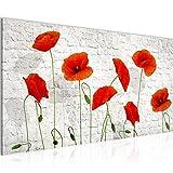 Bilder Blumen Mohnblumen Wandbild Vlies - Leinwand Bild XXL Format Wandbilder Wohnzimmer Wohnung Deko Kunstdrucke Rot 1 Teilig - MADE IN GERMANY - Fertig zum Aufhängen 012512a