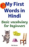 My First Words in Hindi: Basic Vocabulary for Beginners