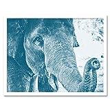 Chambon Elephant Close-Up Trunk Blue Art Print Framed Poster Wall Decor 12X16 inch Elefante Blu Manifesto Parete