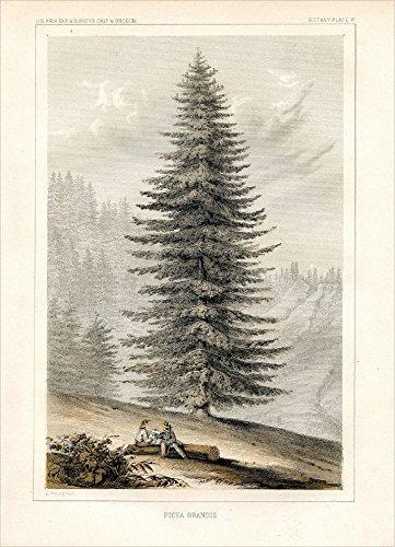 Rückblick Gruppe Baltimore für die u. s. Pacific Rail Road Expedition & Umfragen, 1857Geschenkbox Urlaub Karteikarten-Set (XDB 585)