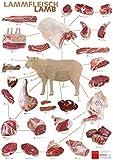 Küchenposter OTTO GOURMET Lamm