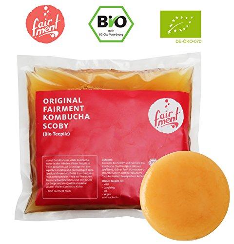 Original Kombucha Tee Pilz in Premium Größe Besonders Vitaler Scoby in Bio-Qualität für 1-5L Mit...