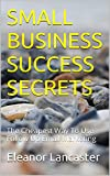 SMALL BUSINESS SUCCESS SECRETS: The Cheapest Way To Use Follow Up Email Marketing (English Edition)