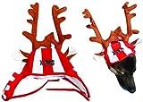 Susis Fashion Shop® Weihnachtsmütze mit X-MAS Druck & Elchgeweih für große Hunde