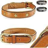 Fashion-Line von Pear Tannery: Hundehalsband aus weichem Vollrindleder, versehen mit einer Stern-Verzierung mittig, S 36-46cm, hellbraun