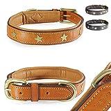 Pear - Tannery Fashion-Line Hundehalsband aus weichem Vollrindleder, Versehen mit Einer Stern-Verzierung mittig, XS 31-41cm, Hellbraun